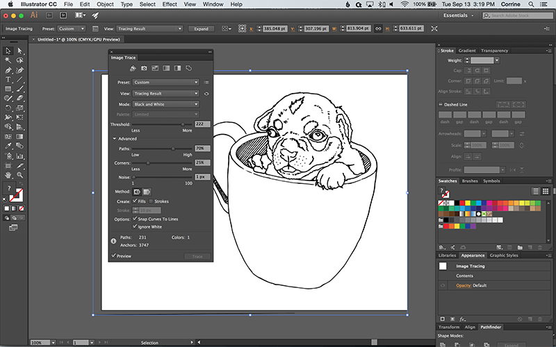 How to Turn a Photo into a Vector Line Art with Illustrator - Web
