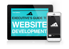 Executive's Guide to Web Development
